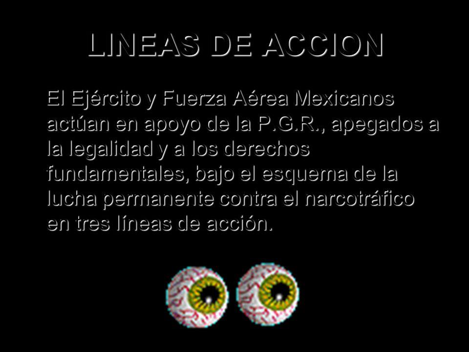 LINEAS DE ACCION El Ejército y Fuerza Aérea Mexicanos actúan en apoyo de la P.G.R., apegados a la legalidad y a los derechos fundamentales, bajo el es