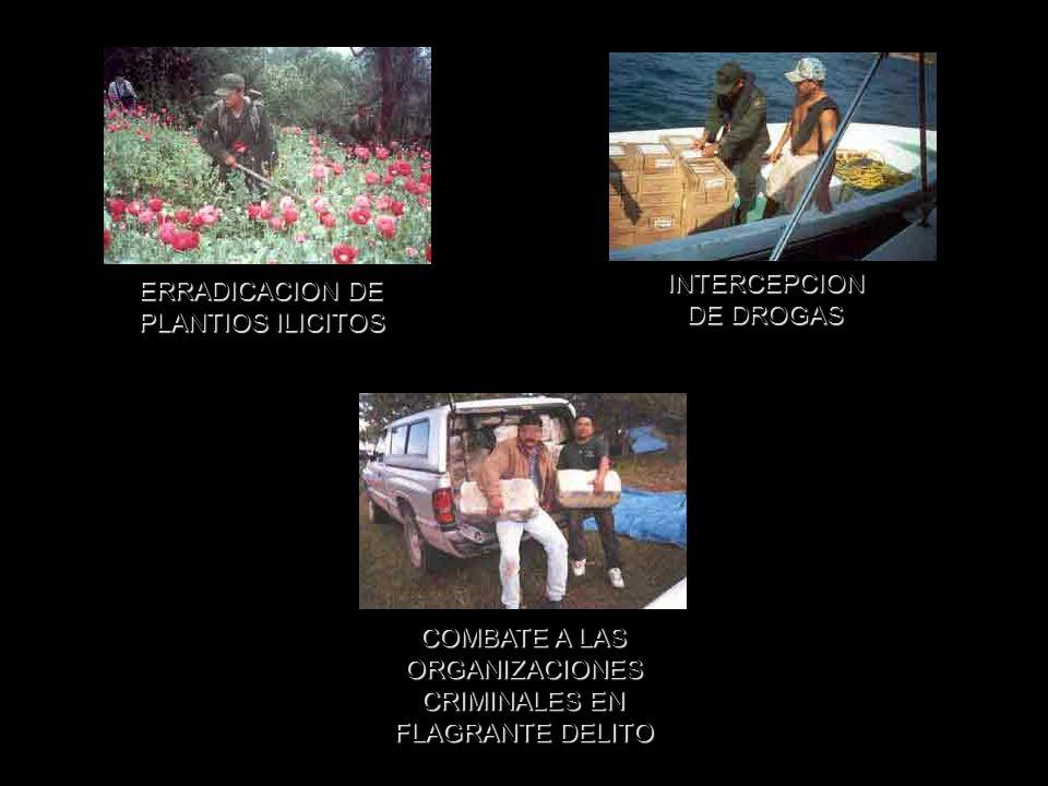ERRADICACION DE PLANTIOS ILICITOS INTERCEPCION DE DROGAS COMBATE A LAS ORGANIZACIONES CRIMINALES EN FLAGRANTE DELITO