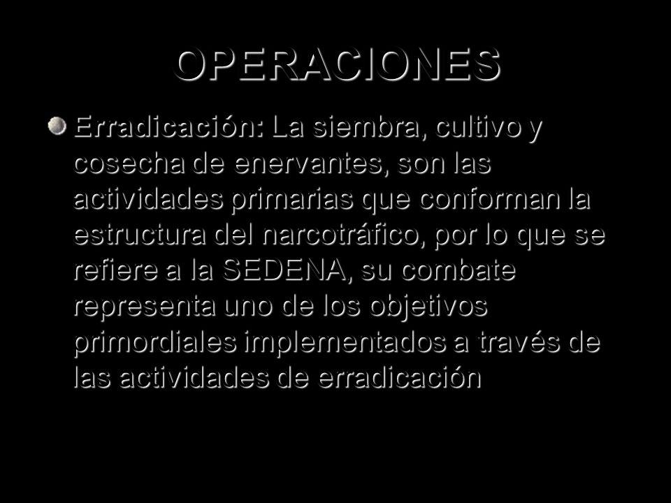 OPERACIONES Erradicación: La siembra, cultivo y cosecha de enervantes, son las actividades primarias que conforman la estructura del narcotráfico, por
