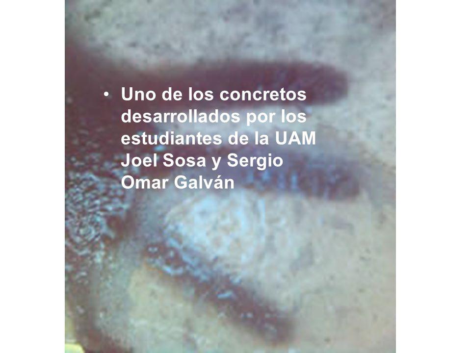Uno de los concretos desarrollados por los estudiantes de la UAM Joel Sosa y Sergio Omar Galván