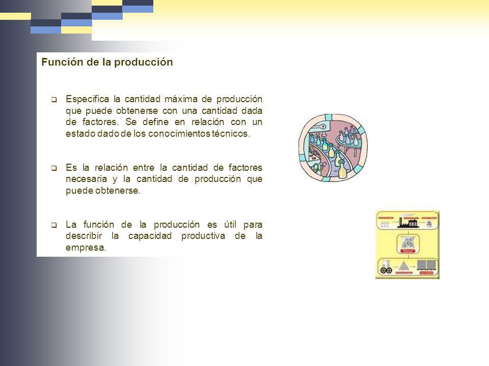 Función de la producción Especifica la cantidad máxima de producción que puede obtenerse con una cantidad dada de factores. Se define en relación con