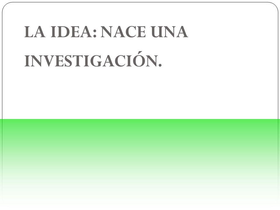 LA IDEA: NACE UNA INVESTIGACIÓN.