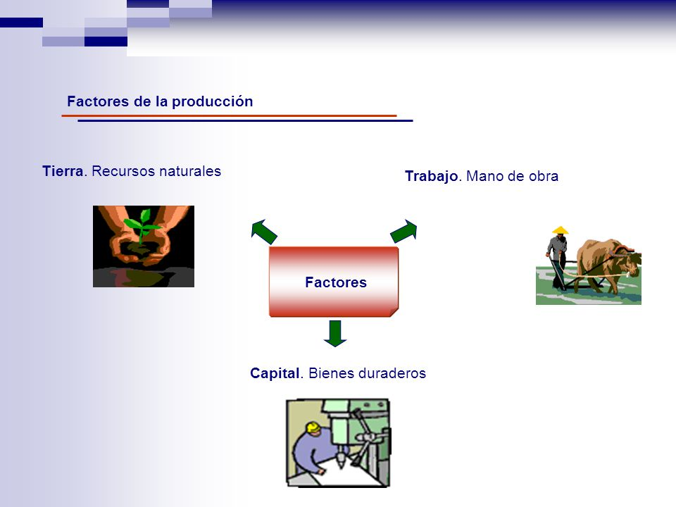 Factores de la producción Factores Tierra. Recursos naturales Trabajo. Mano de obra Capital. Bienes duraderos
