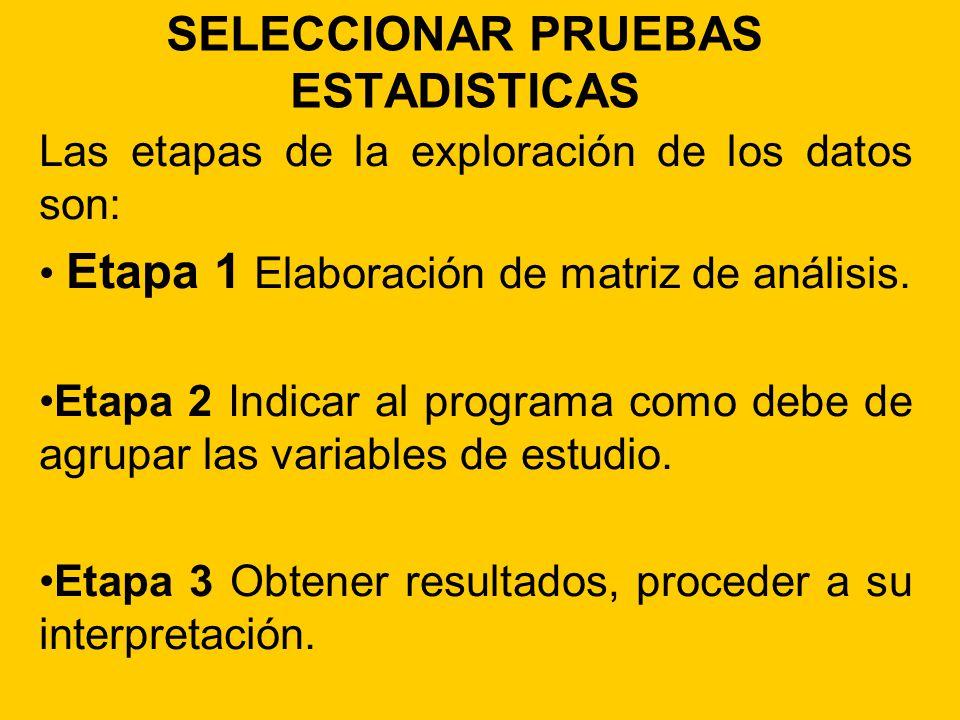 SELECCIONAR PRUEBAS ESTADISTICAS Las etapas de la exploración de los datos son: Etapa 1 Elaboración de matriz de análisis. Etapa 2 Indicar al programa