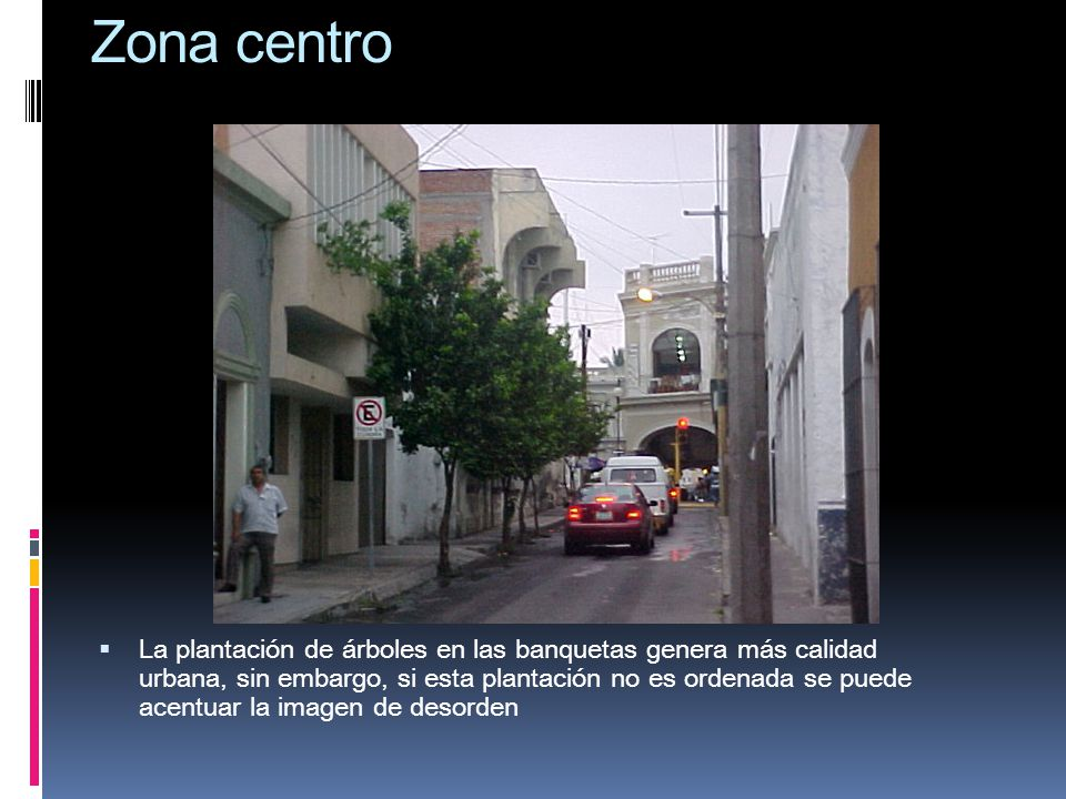 Zona centro La plantación de árboles en las banquetas genera más calidad urbana, sin embargo, si esta plantación no es ordenada se puede acentuar la i
