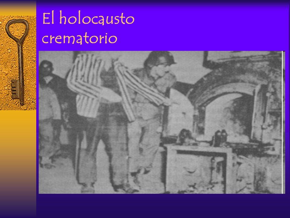 ¿Qué es el holocausto.