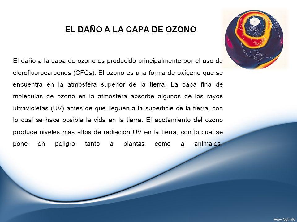 EL DAÑO A LA CAPA DE OZONO El daño a la capa de ozono es producido principalmente por el uso de clorofluorocarbonos (CFCs). El ozono es una forma de o