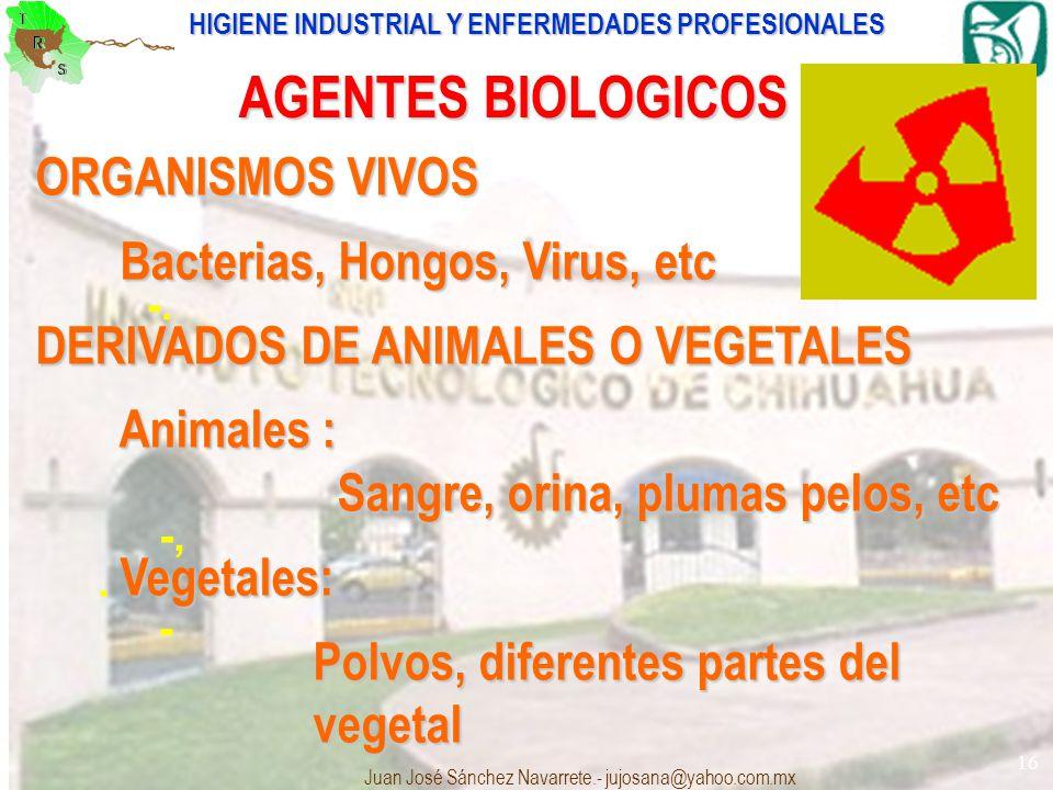 HIGIENE INDUSTRIAL Y ENFERMEDADES PROFESIONALES Juan José Sánchez Navarrete.- jujosana@yahoo.com.mx 16 : -. -,. - AGENTES BIOLOGICOS ORGANISMOS VIVOS