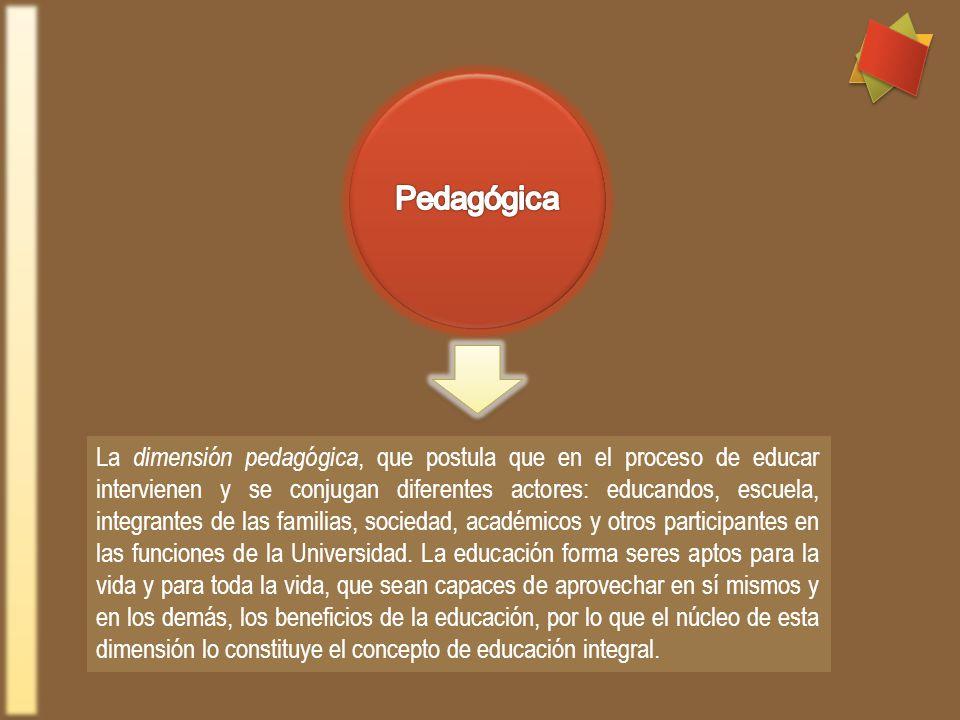 La dimensión pedagógica, que postula que en el proceso de educar intervienen y se conjugan diferentes actores: educandos, escuela, integrantes de las