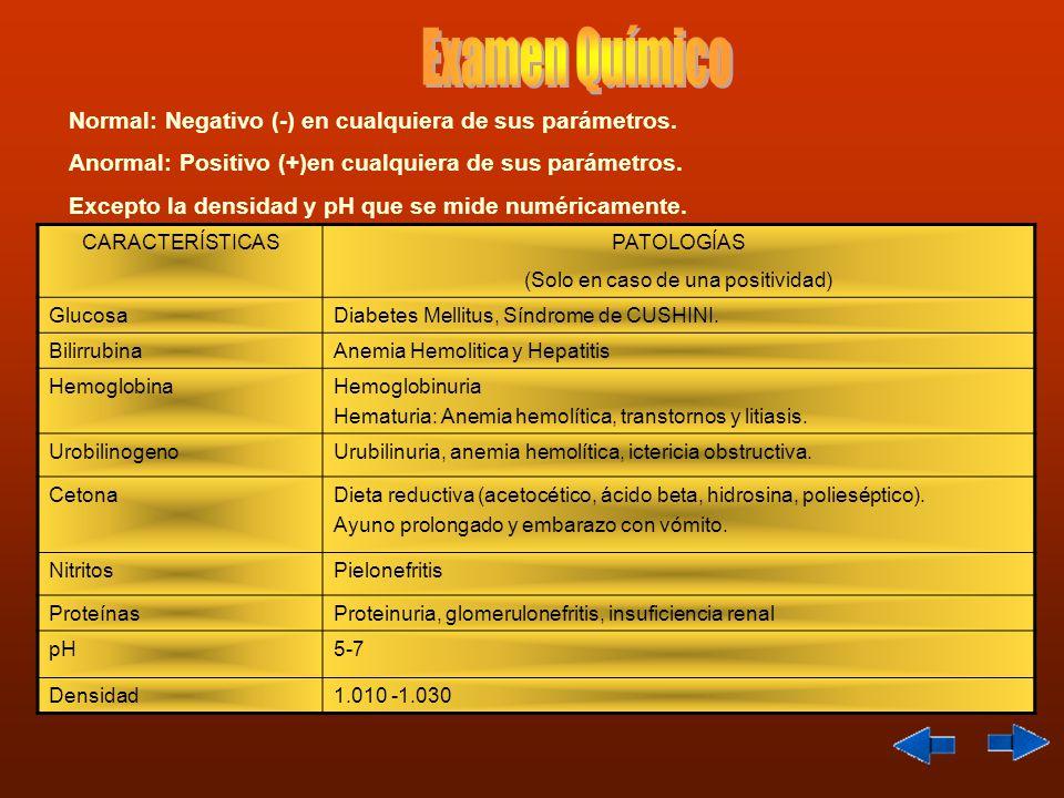 Normal: Negativo (-) en cualquiera de sus parámetros. Anormal: Positivo (+)en cualquiera de sus parámetros. Excepto la densidad y pH que se mide numér