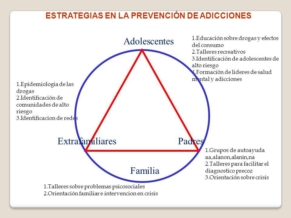 1.Educación sobre drogas y efectos del consumo 2.Talleres recreativos 3.Identificación de adolescentes de alto riesgo 4.Formación de lideres de salud