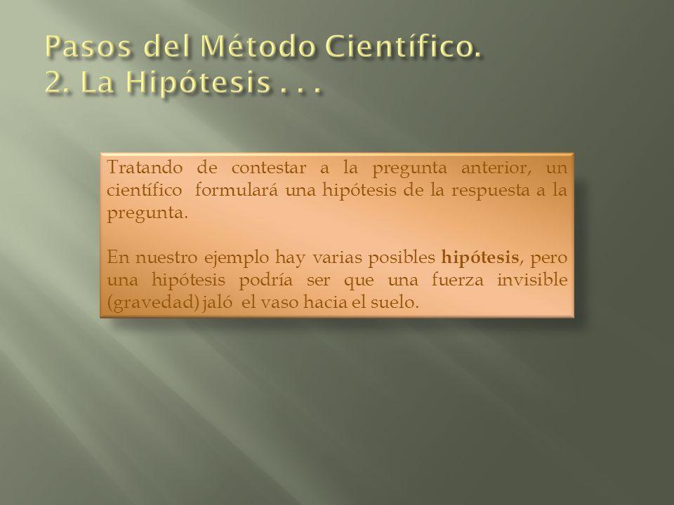 Tratando de contestar a la pregunta anterior, un científico formulará una hipótesis de la respuesta a la pregunta. En nuestro ejemplo hay varias posib