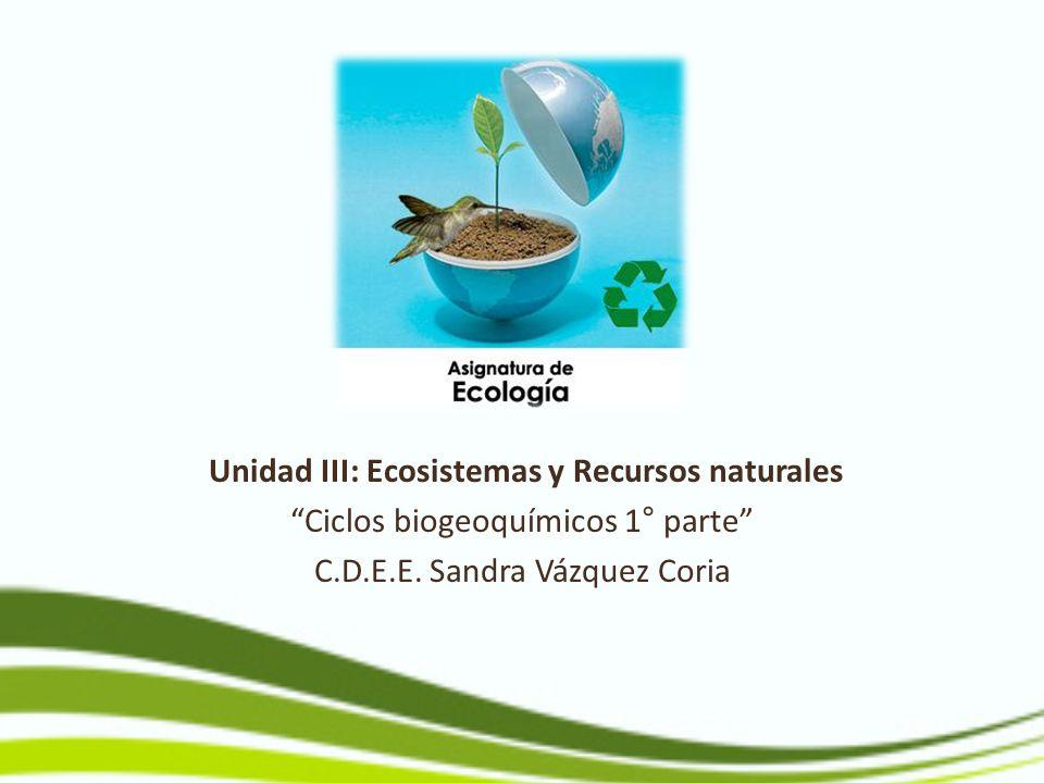 Unidad III: Ecosistemas y Recursos naturales Ciclos biogeoquímicos 1° parte C.D.E.E. Sandra Vázquez Coria