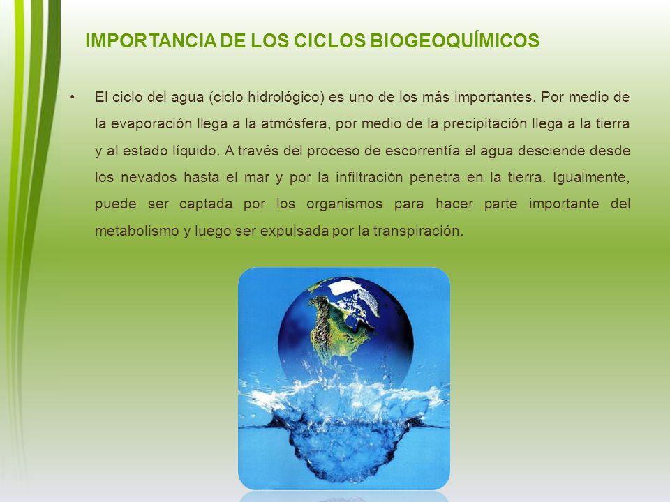 El ciclo del agua (ciclo hidrológico) es uno de los más importantes. Por medio de la evaporación llega a la atmósfera, por medio de la precipitación l