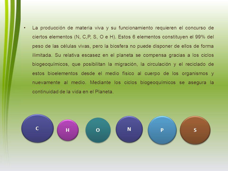 La producción de materia viva y su funcionamiento requieren el concurso de ciertos elementos (N, C,P, S, O e H). Estos 6 elementos constituyen el 99%