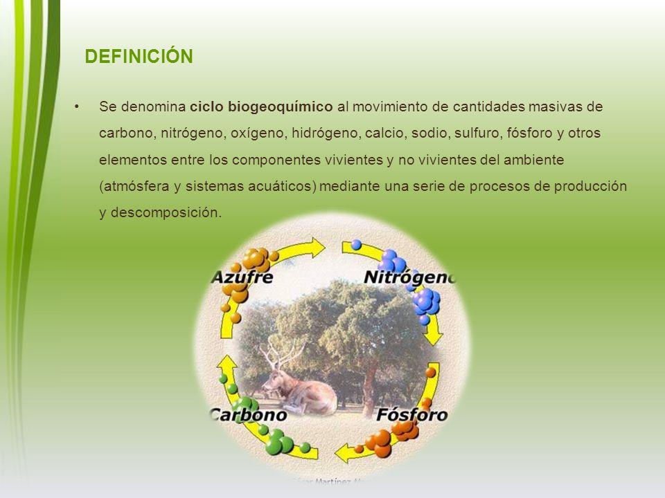 DEFINICIÓN Se denomina ciclo biogeoquímico al movimiento de cantidades masivas de carbono, nitrógeno, oxígeno, hidrógeno, calcio, sodio, sulfuro, fósf