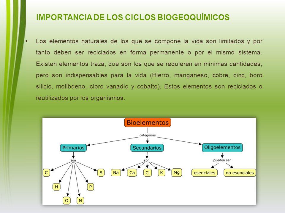 IMPORTANCIA DE LOS CICLOS BIOGEOQUÍMICOS Los elementos naturales de los que se compone la vida son limitados y por tanto deben ser reciclados en forma
