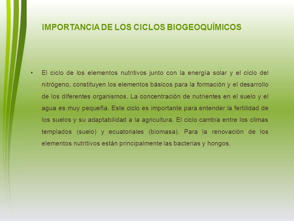 El ciclo de los elementos nutritivos junto con la energía solar y el ciclo del nitrógeno, constituyen los elementos básicos para la formación y el des