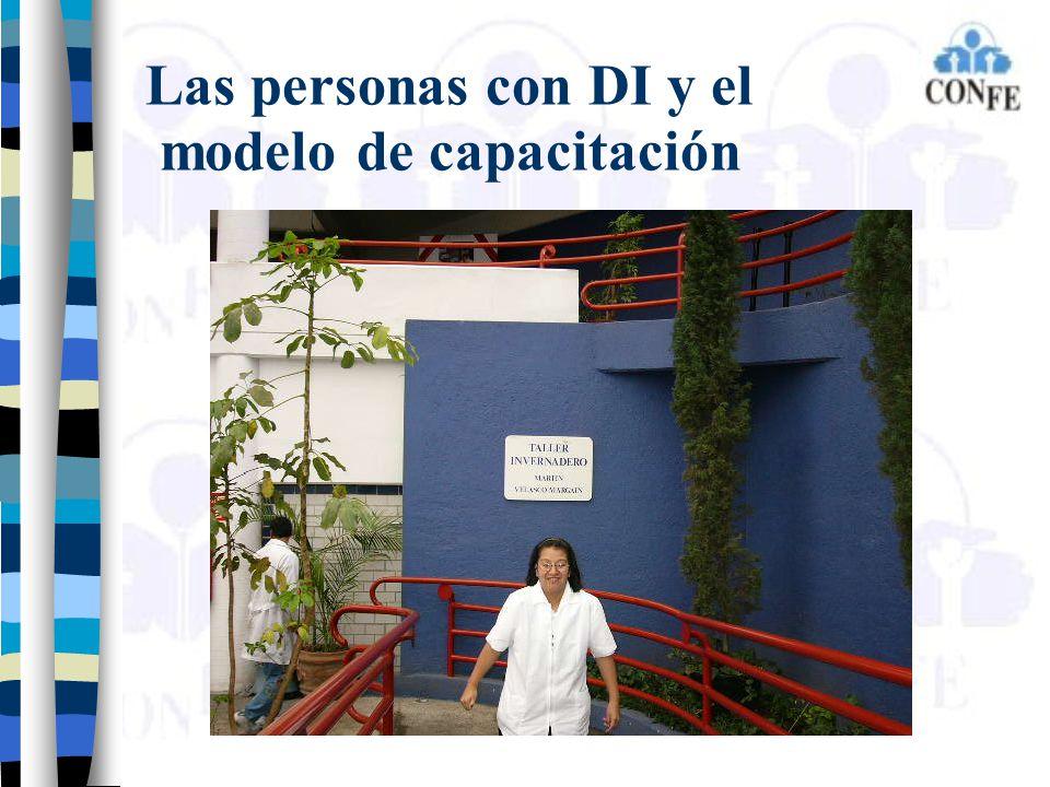 Las personas con DI y el modelo de capacitación