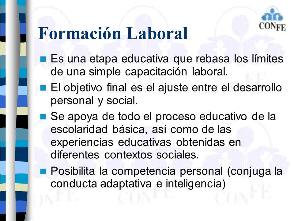 Formación Laboral Es una etapa educativa que rebasa los límites de una simple capacitación laboral. El objetivo final es el ajuste entre el desarrollo