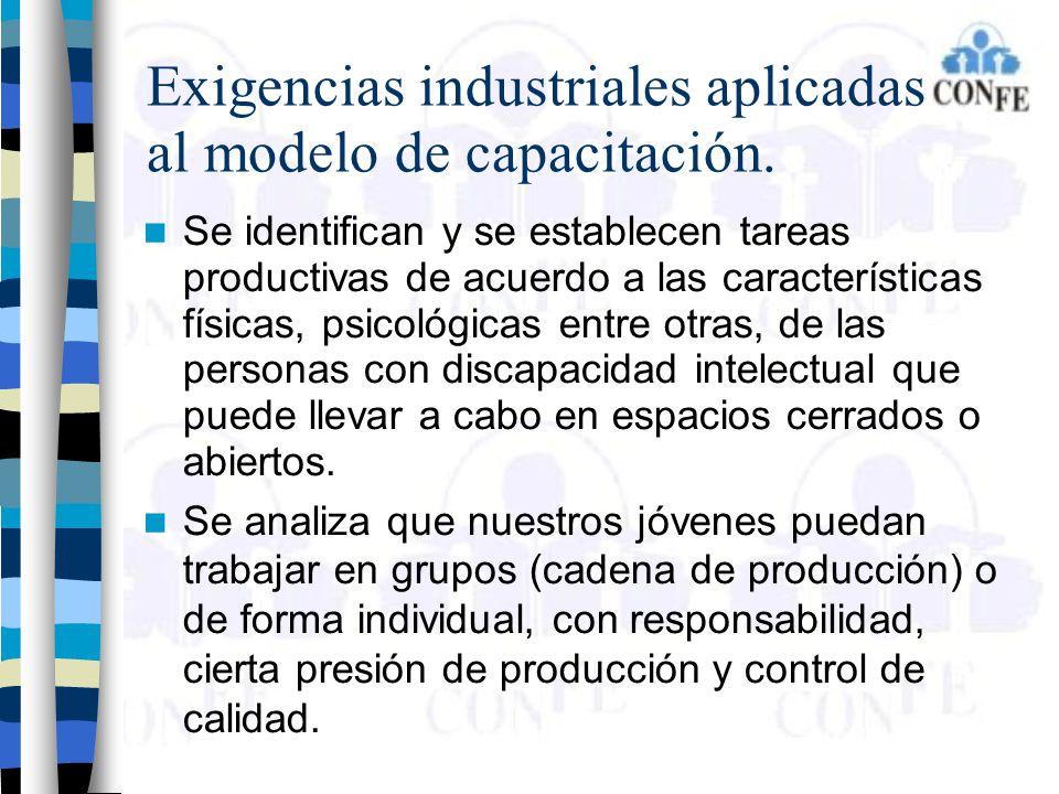 Exigencias industriales aplicadas al modelo de capacitación. Se identifican y se establecen tareas productivas de acuerdo a las características física