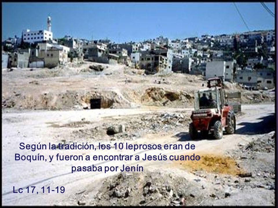 Lc 17, 11-19 Según la tradición, los 10 leprosos eran de Boquín, y fueron a encontrar a Jesús cuando pasaba por Jenín