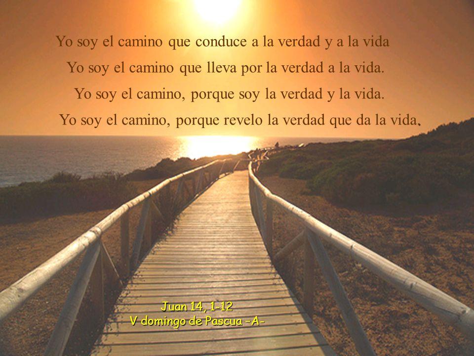 Yo soy el camino que conduce a la verdad y a la vida Yo soy el camino que lleva por la verdad a la vida.