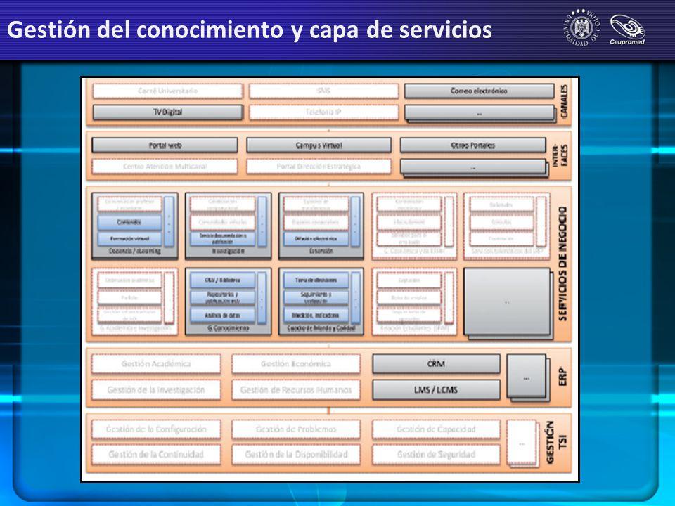 Gestión del conocimiento y capa de servicios