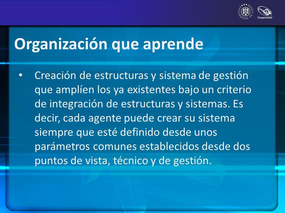 Organización que aprende Creación de estructuras y sistema de gestión que amplíen los ya existentes bajo un criterio de integración de estructuras y s