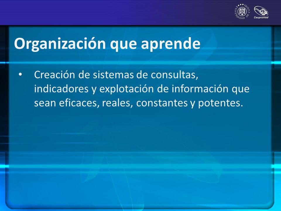 Organización que aprende Creación de sistemas de consultas, indicadores y explotación de información que sean eficaces, reales, constantes y potentes.