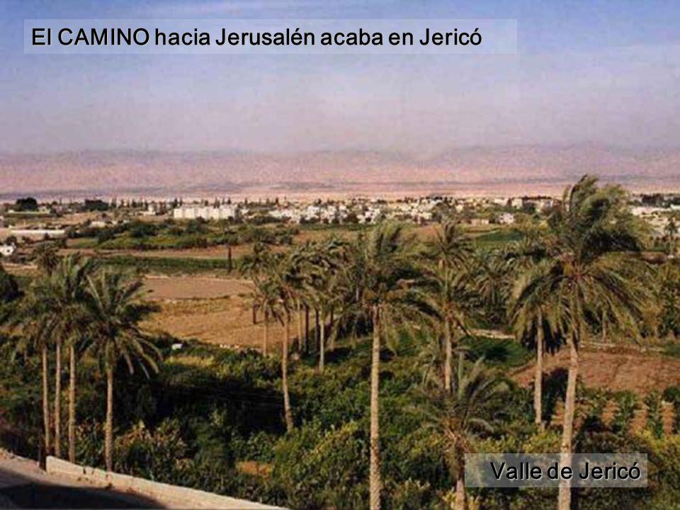 Valle de Jericó El CAMINO hacia Jerusalén acaba en Jericó