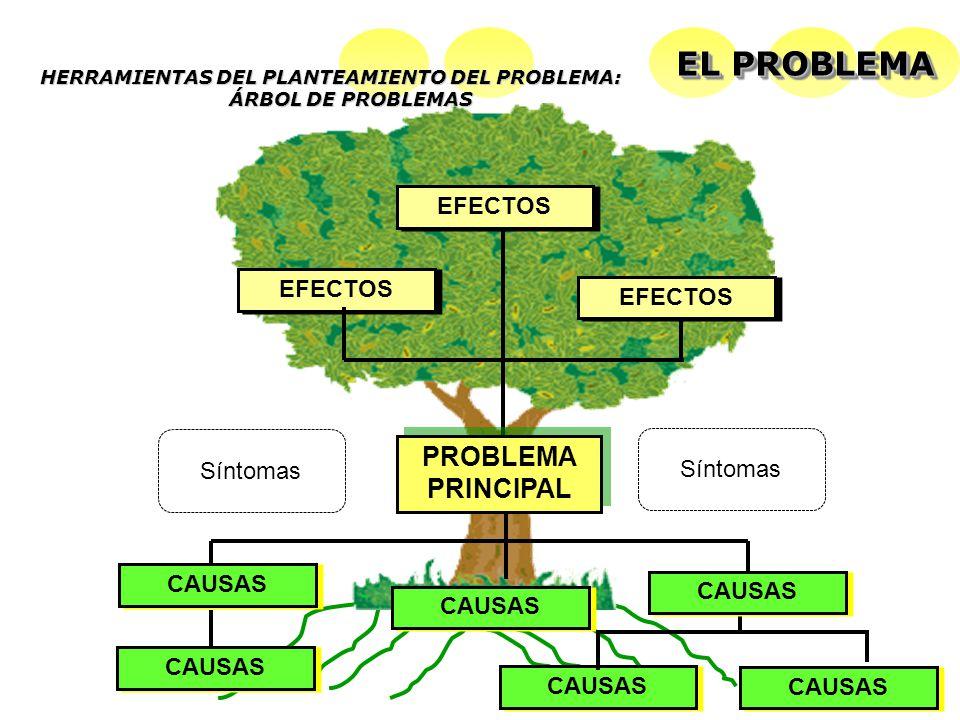 HERRAMIENTAS DEL PLANTEAMIENTO DEL PROBLEMA: ÁRBOL DE PROBLEMAS EFECTOS PROBLEMA PRINCIPAL CAUSAS EL PROBLEMA Síntomas