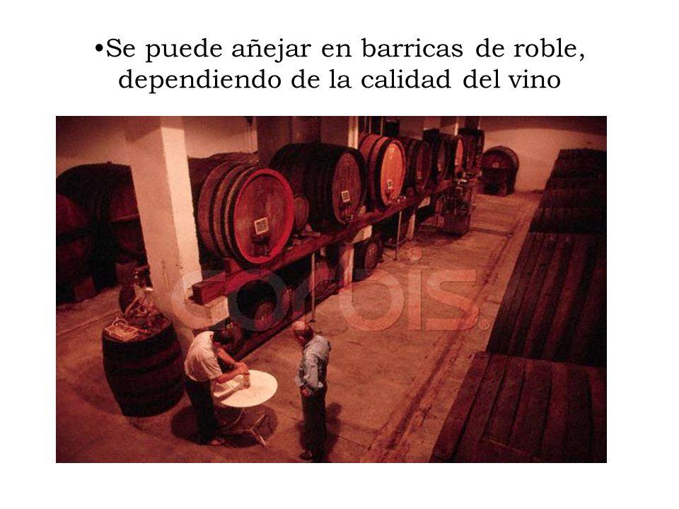 Se puede añejar en barricas de roble, dependiendo de la calidad del vino