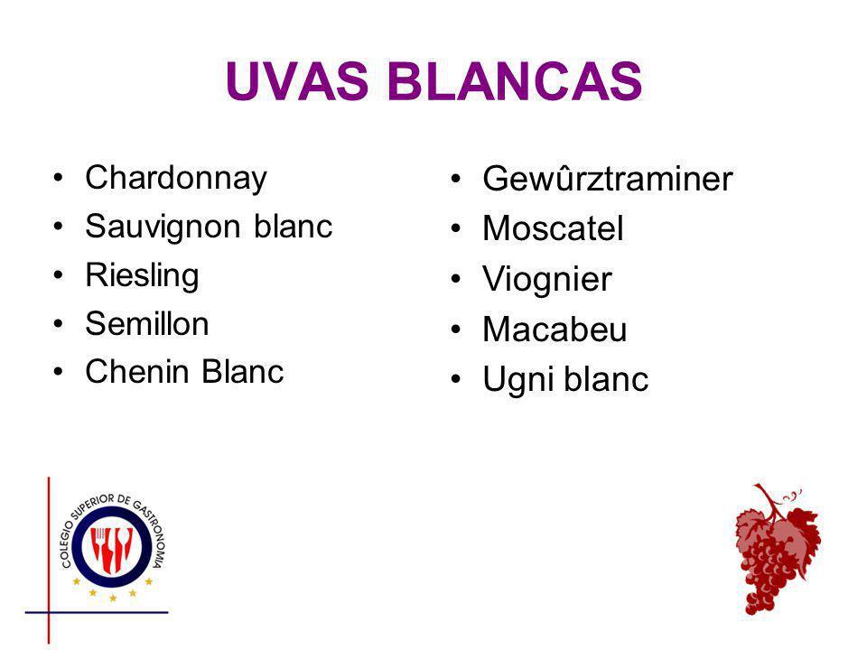 UVAS BLANCAS Chardonnay Sauvignon blanc Riesling Semillon Chenin Blanc Gewûrztraminer Moscatel Viognier Macabeu Ugni blanc
