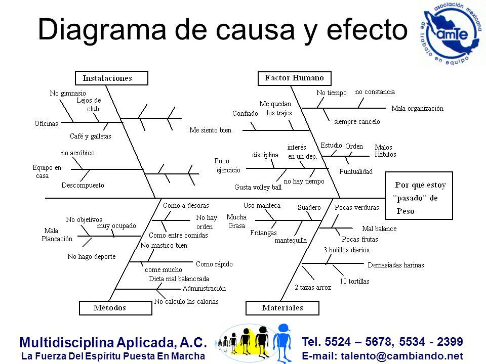 Tel. 5524 – 5678, 5534 - 2399 E-mail: talento@cambiando.net Multidisciplina Aplicada, A.C.