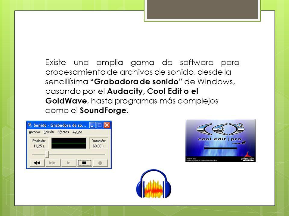 Existe una amplia gama de software para procesamiento de archivos de sonido, desde la sencillísima Grabadora de sonido de Windows, pasando por el Audacity, Cool Edit o el GoldWave, hasta programas más complejos como el SoundForge.