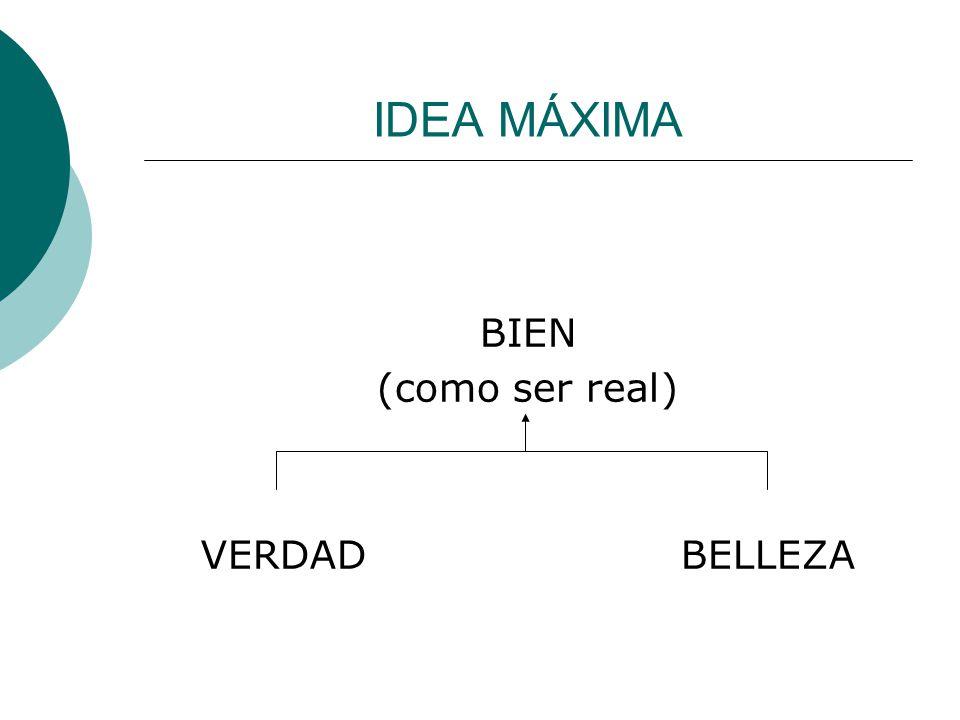 IDEA MÁXIMA BIEN (como ser real) VERDADBELLEZA