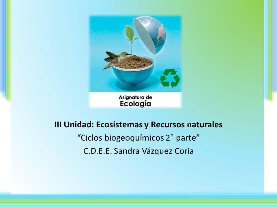 III Unidad: Ecosistemas y Recursos naturales Ciclos biogeoquímicos 2° parte C.D.E.E.