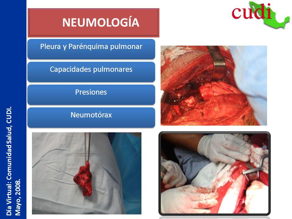 NEUMOLOGÍA Pleura y Parénquima pulmonar Presiones Neumotórax Capacidades pulmonares Día Virtual: Comunidad Salud, CUDI. Mayo, 2008.