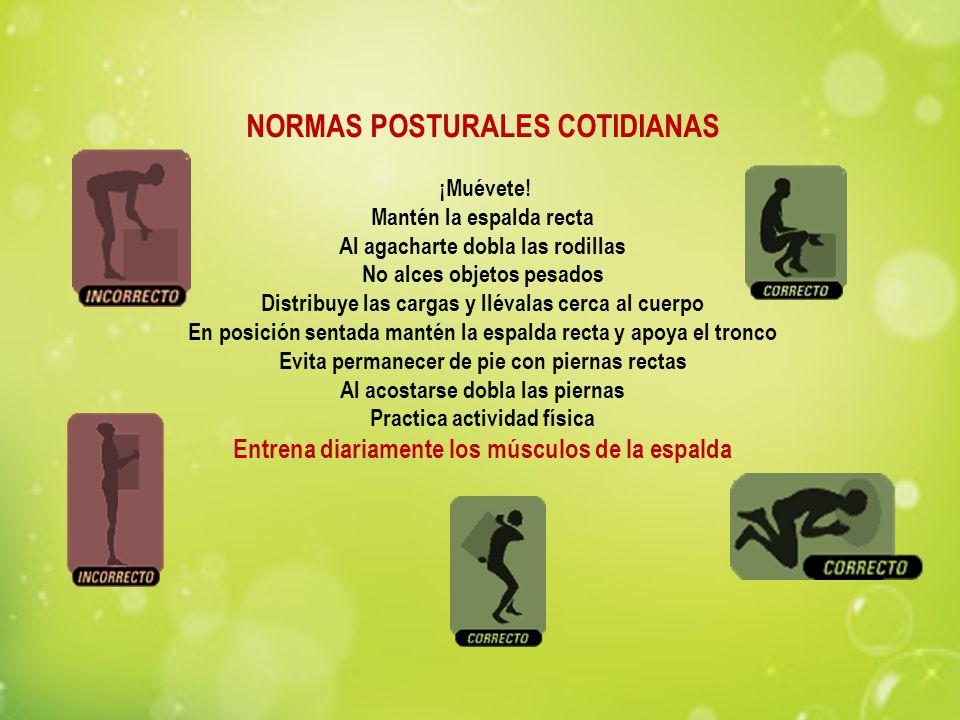 NORMAS POSTURALES COTIDIANAS ¡Muévete! Mantén la espalda recta Al agacharte dobla las rodillas No alces objetos pesados Distribuye las cargas y lléval