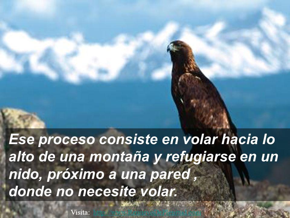 Entonces el águila, tiene sólo dos alternativas: Morir,..... ó enfrentar un doloroso proceso de renovación que durará 150 días. Visita: http://www.Ren