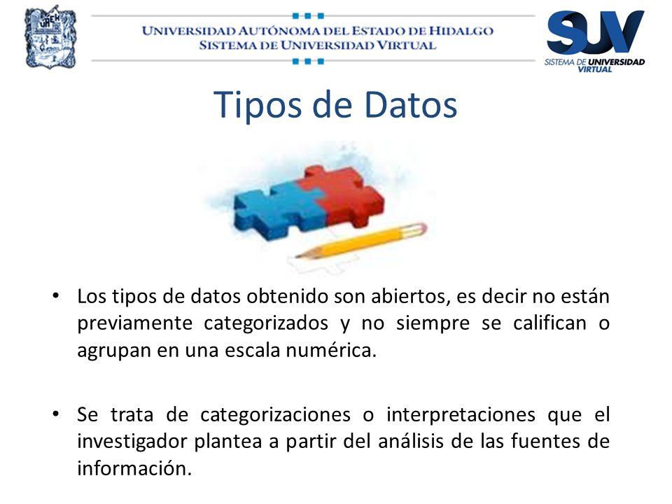 Tipos de Datos Los tipos de datos obtenido son abiertos, es decir no están previamente categorizados y no siempre se califican o agrupan en una escala