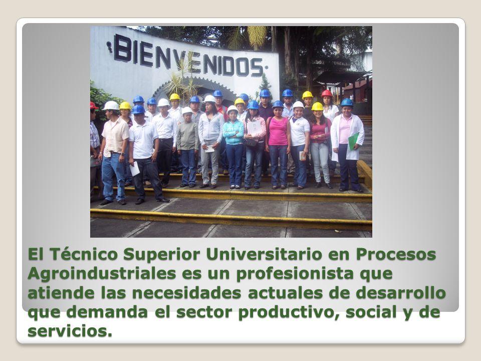 El Técnico Superior Universitario en Procesos Agroindustriales es un profesionista que atiende las necesidades actuales de desarrollo que demanda el s
