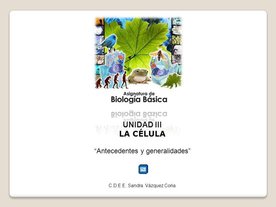 UNIDAD III LA CÉLULA Antecedentes y generalidades C.D.E.E. Sandra Vázquez Coria