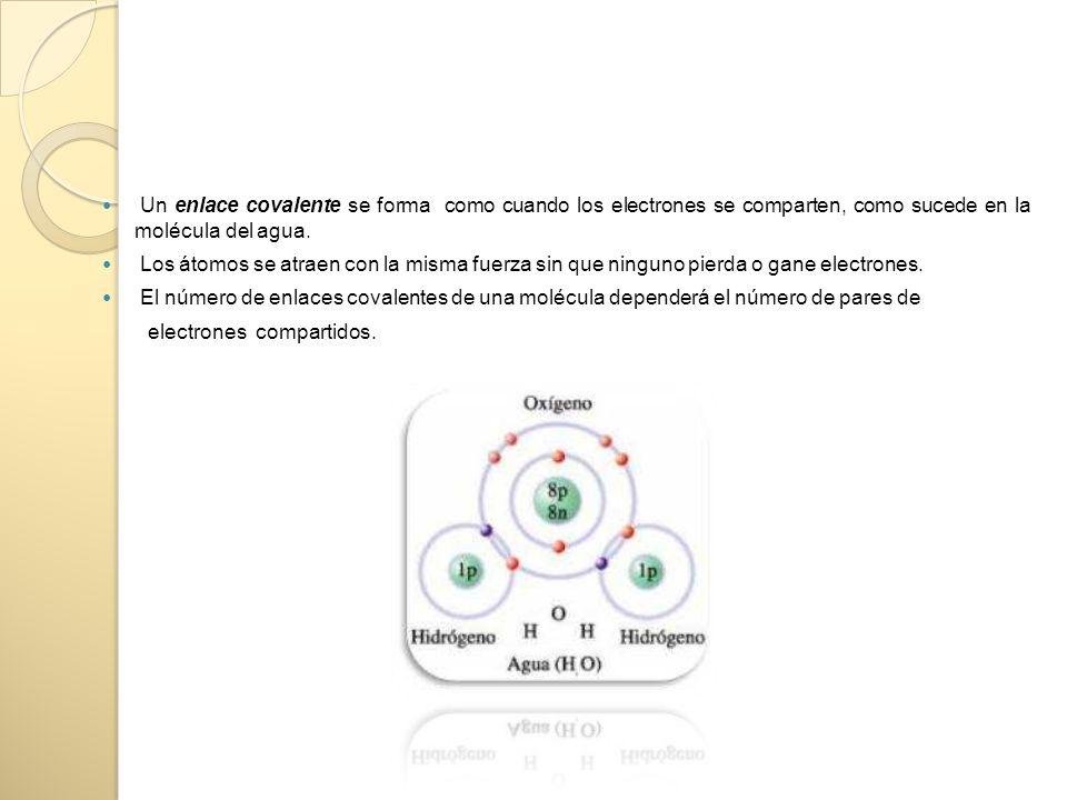 Un enlace covalente se forma como cuando los electrones se comparten, como sucede en la molécula del agua.