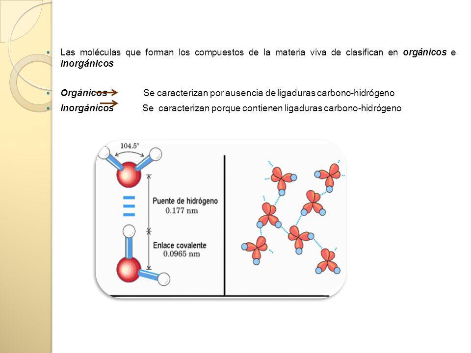 Las moléculas que forman los compuestos de la materia viva de clasifican en orgánicos e inorgánicos Orgánicos Se caracterizan por ausencia de ligaduras carbono-hidrógeno Inorgánicos Se caracterizan porque contienen ligaduras carbono-hidrógeno