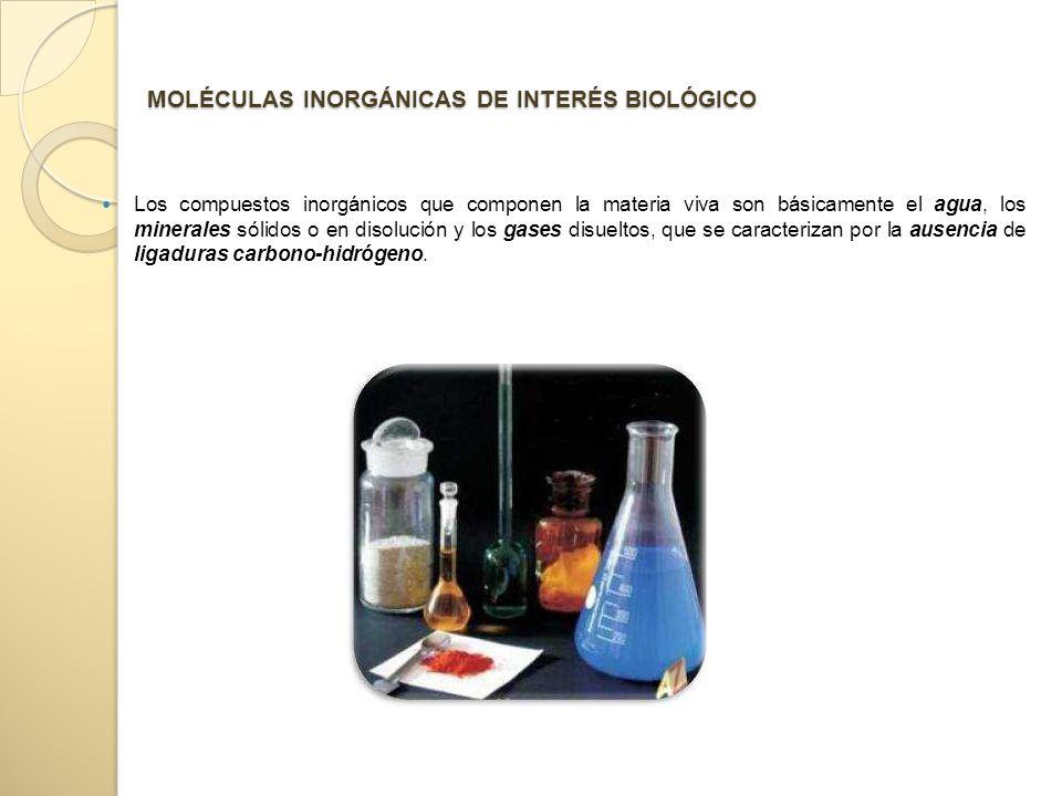 MOLÉCULAS INORGÁNICAS DE INTERÉS BIOLÓGICO Los compuestos inorgánicos que componen la materia viva son básicamente el agua, los minerales sólidos o en disolución y los gases disueltos, que se caracterizan por la ausencia de ligaduras carbono-hidrógeno.