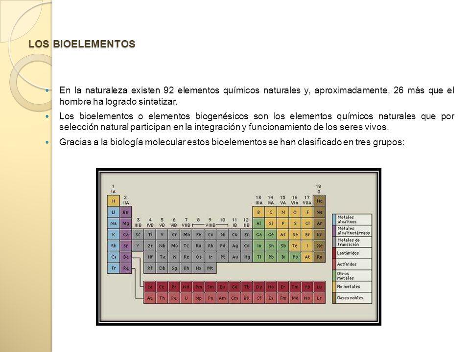 LOS BIOELEMENTOS En la naturaleza existen 92 elementos químicos naturales y, aproximadamente, 26 más que el hombre ha logrado sintetizar.