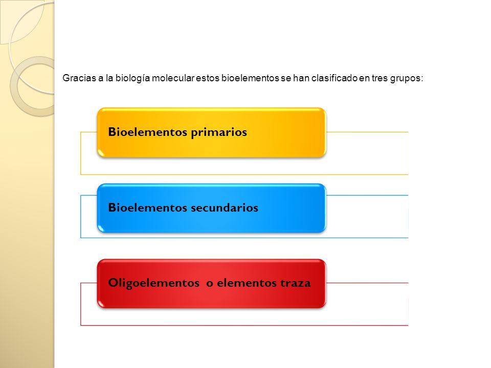 Bioelementos primariosBioelementos secundariosOligoelementos o elementos traza