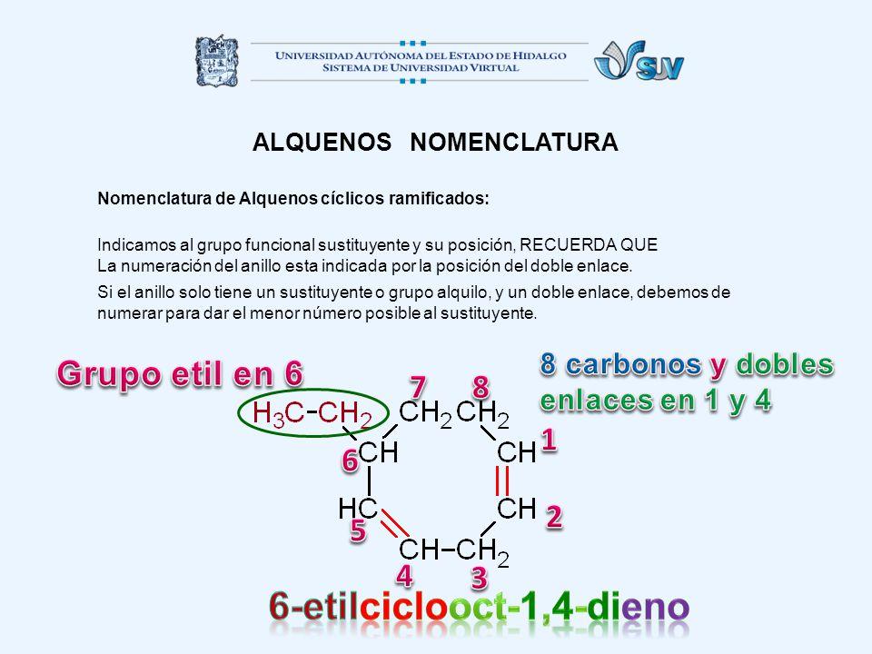 ALQUENOS NOMENCLATURA Nomenclatura de Alquenos cíclicos ramificados: Indicamos al grupo funcional sustituyente y su posición, RECUERDA QUE La numeraci